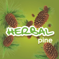 Mini Herbal Pine minivulling 100ml/65gr. 3000shots /12 st