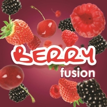 Mini Berry Fusion minivulling 100ml/65gr. 3000shots /12 st